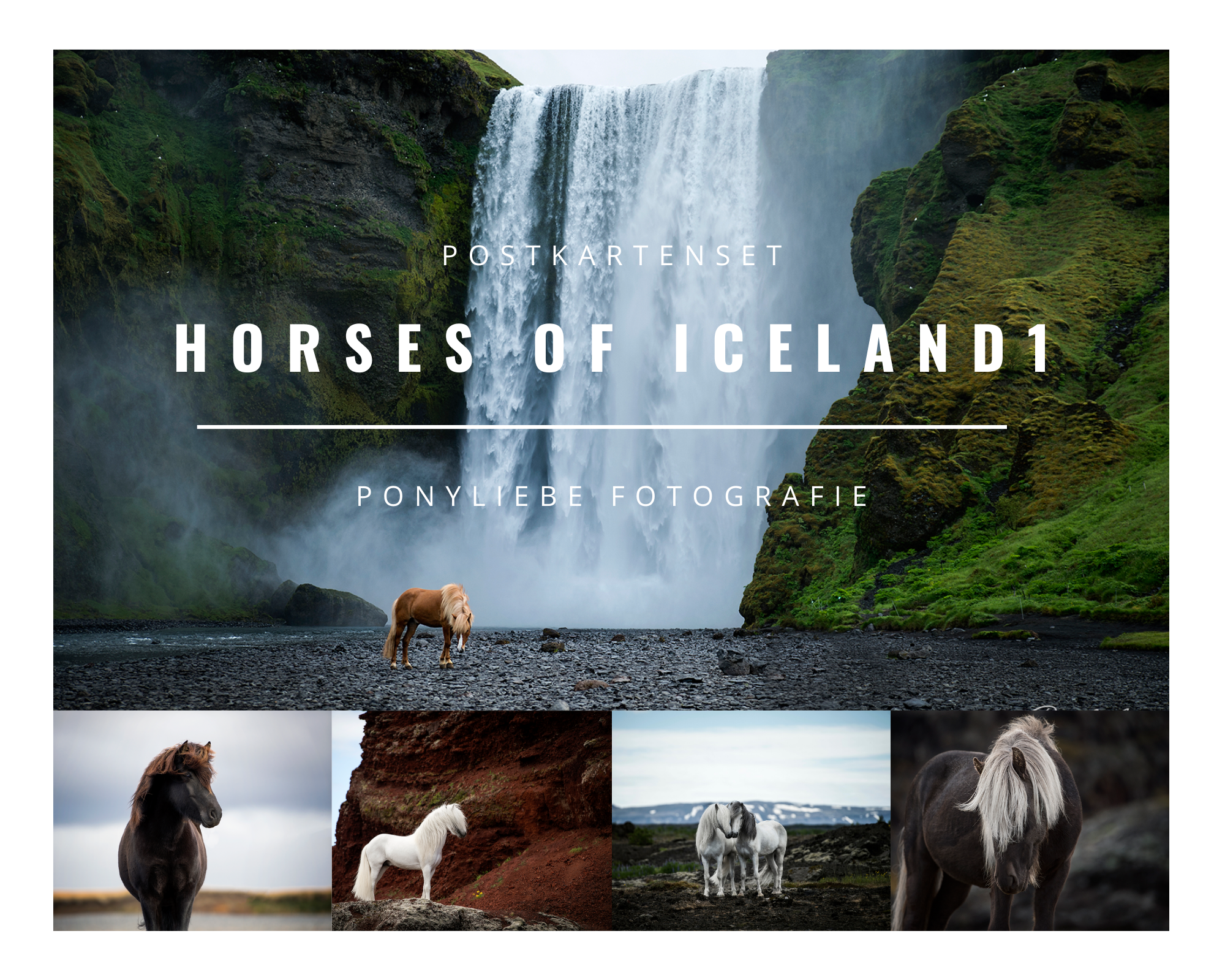 Postkarten Set- Horses of Iceland 1-0