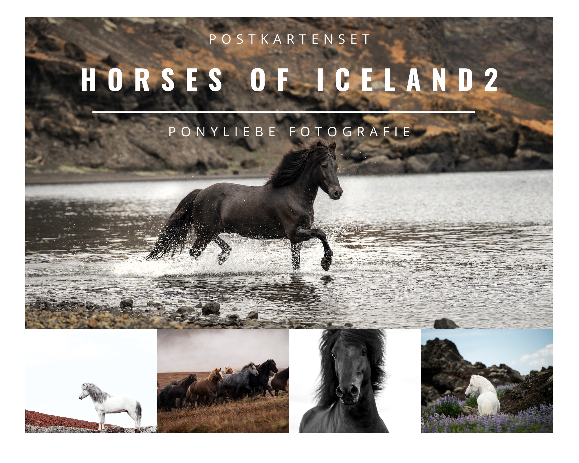 Postkarten Set- Horses of Iceland 2-0