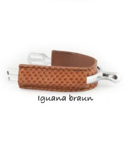 Iguana Braun